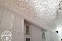 Pressed Tin Panels Shield ceiling with Peacock cornice