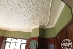 Pressed Tin Panels Shield Ceiling Feature White Corner with Small Rough Cast