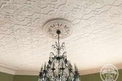 Pressed Tin Panels Shield Ceiling Feature White Close Light Fitting